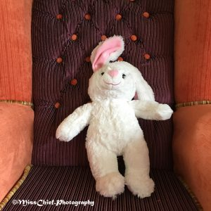 White Rabbit on the Mad Hatter chair