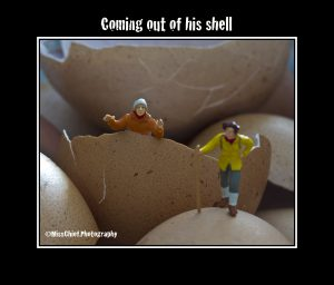 Coming our of his shell