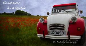 Titinne the red & white 2cv